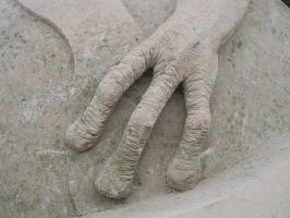 Dolore alle mani e omotossicologia