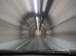 Omotossicologia roma tunnel carpale